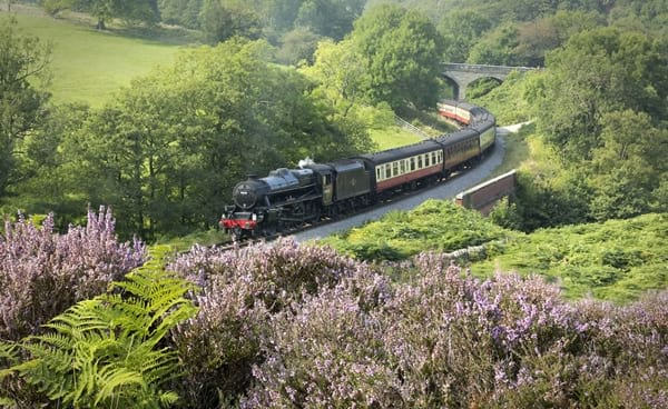 Future of the North Yorkshire Moors Railway secured thanks to a £4.600.000 lottery grant