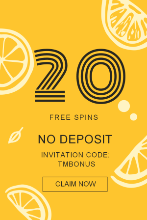 20 no deposit free spins multilotto pinterest